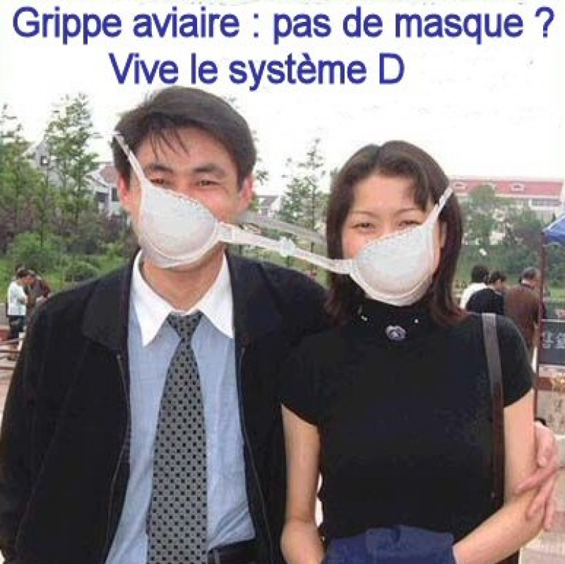 grippe_aviaire masque systeme_D