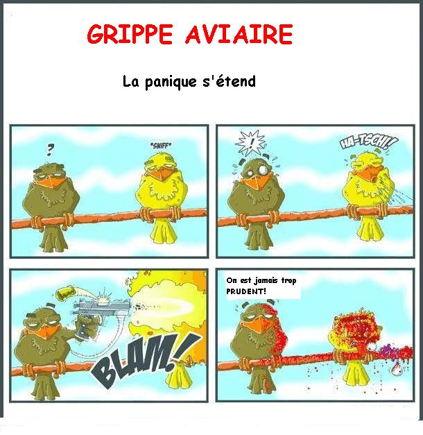 grippe_aviaire_prudence