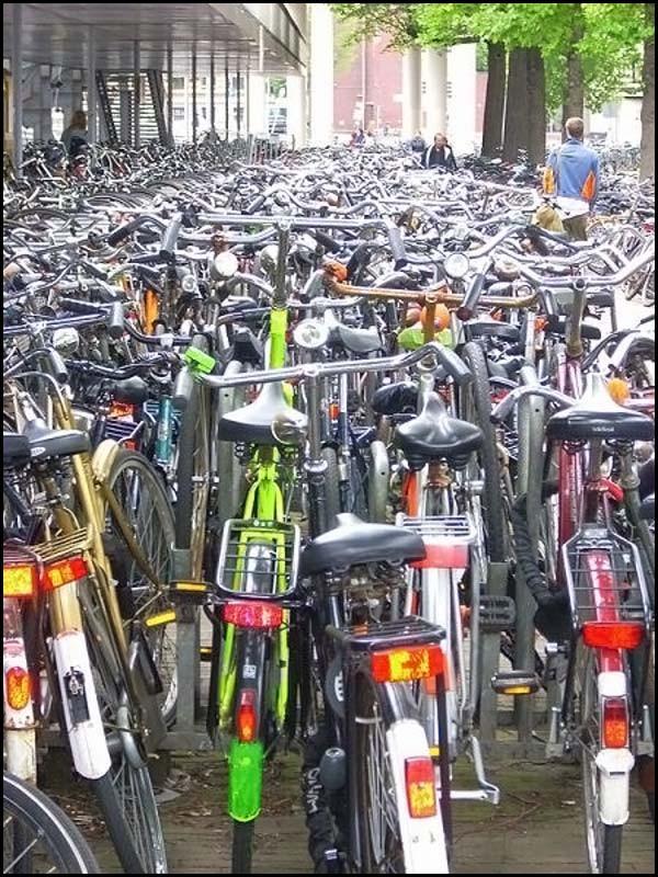 Parking à vélo